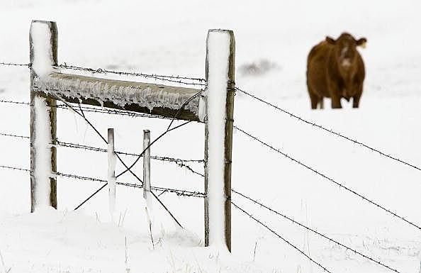 Major Spring Snowstorm Hits Montana